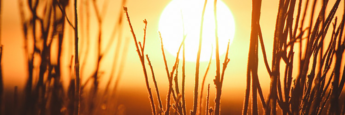 Sun Setting in distance